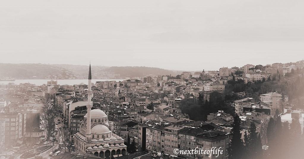 View from the Bosphorus Bridge in istanbul