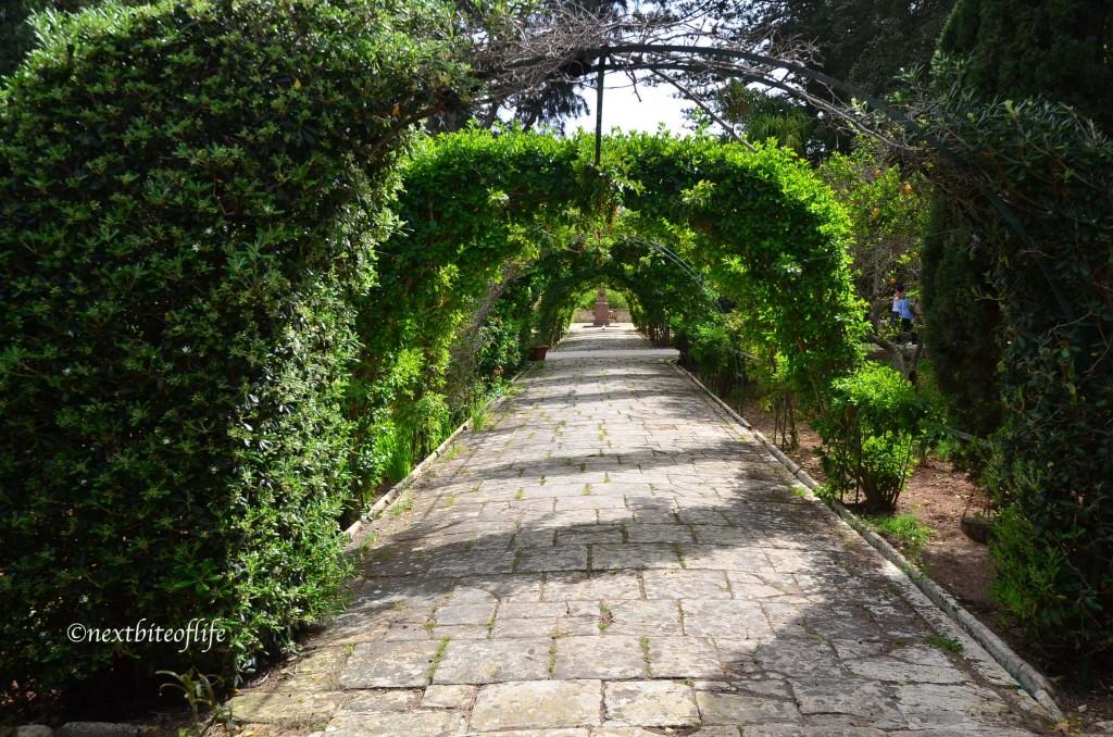 Passageway with plants at San Antonio Gardens malta