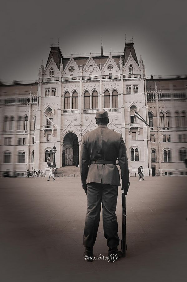 back of guard standing at hungarian parliament