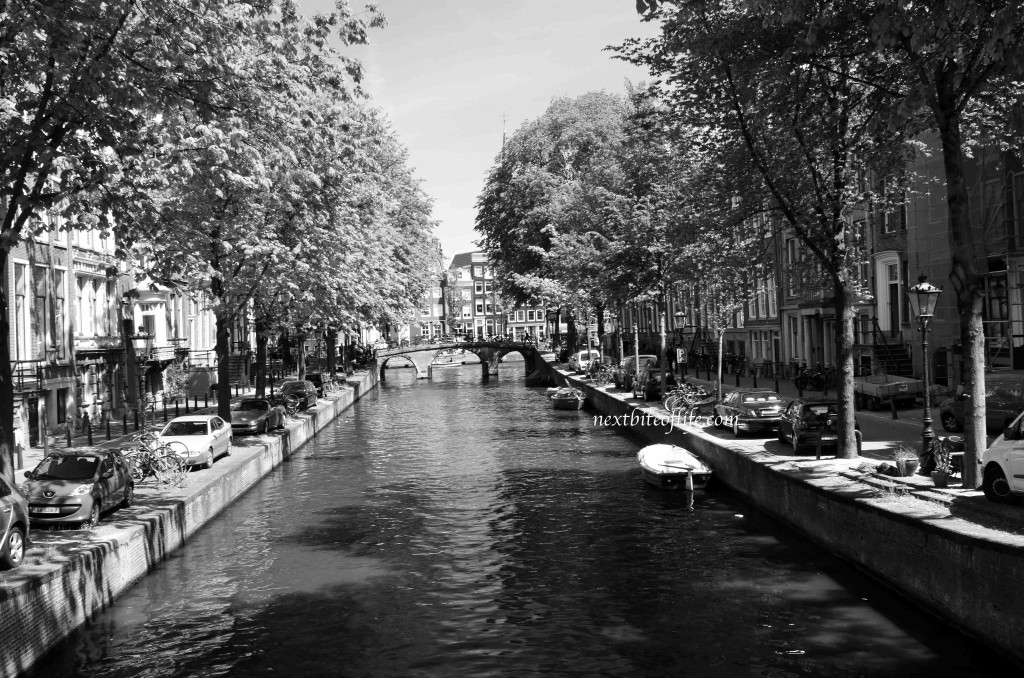 amsterdam serene view