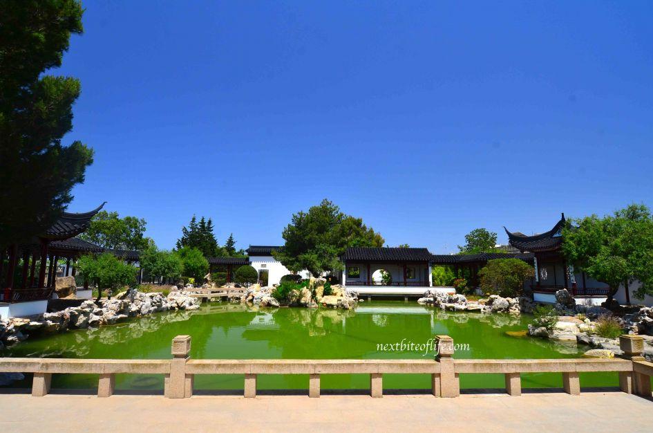 pond at chinese garden of serenity malta