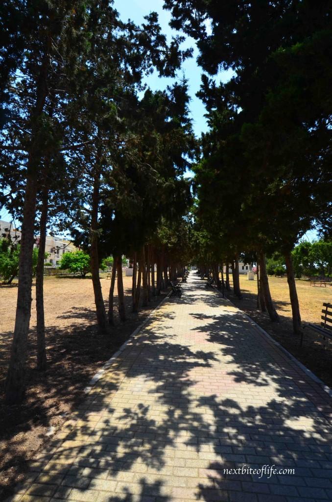 straight path chinese garden