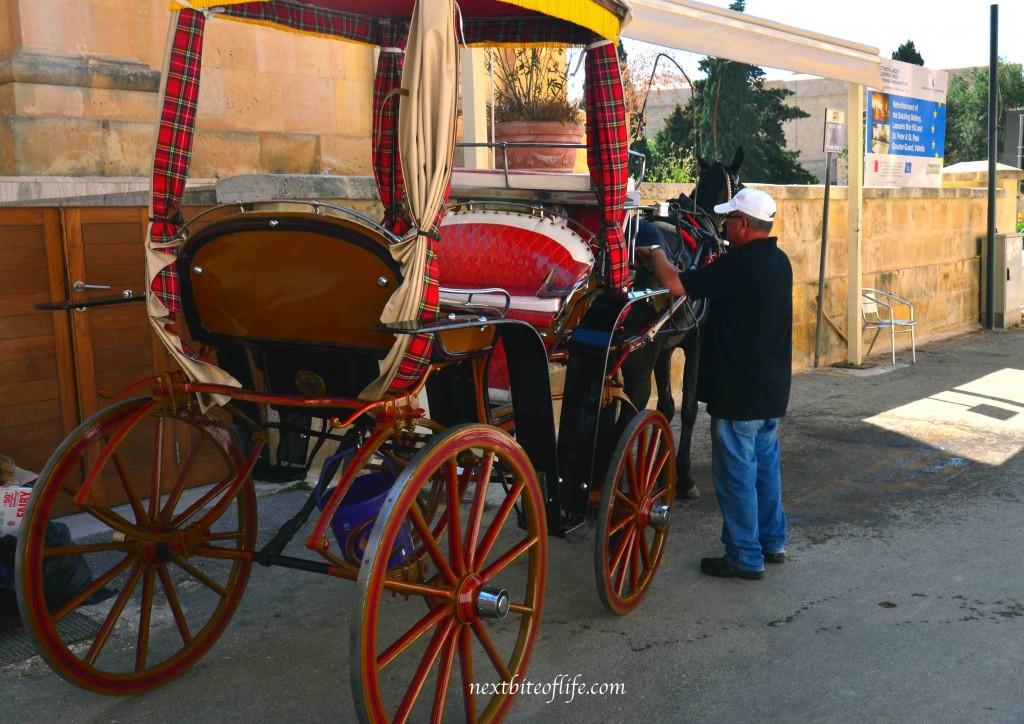 malta horse drawn carriage in Malta