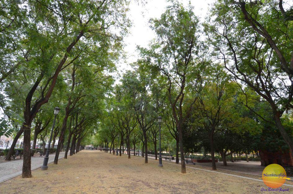 Simple pleasures: Walking in the park in Seville