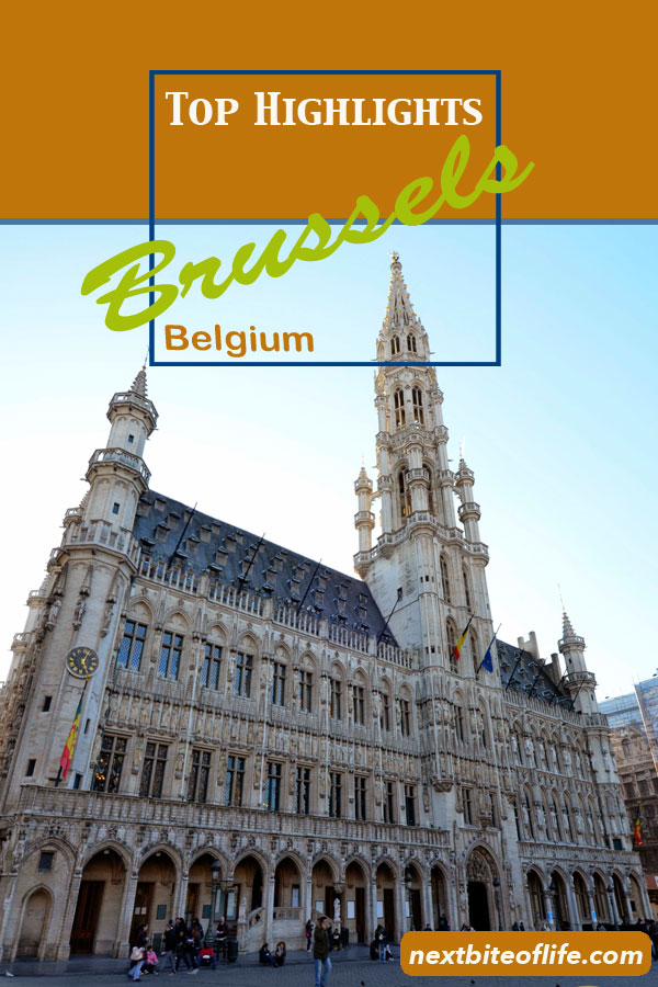 Brussels highlights must see #brussels #belgium #mannekinpis #atomium #mustseebrussels #brusselshighlight #brusselsguide #whattoseebrussels