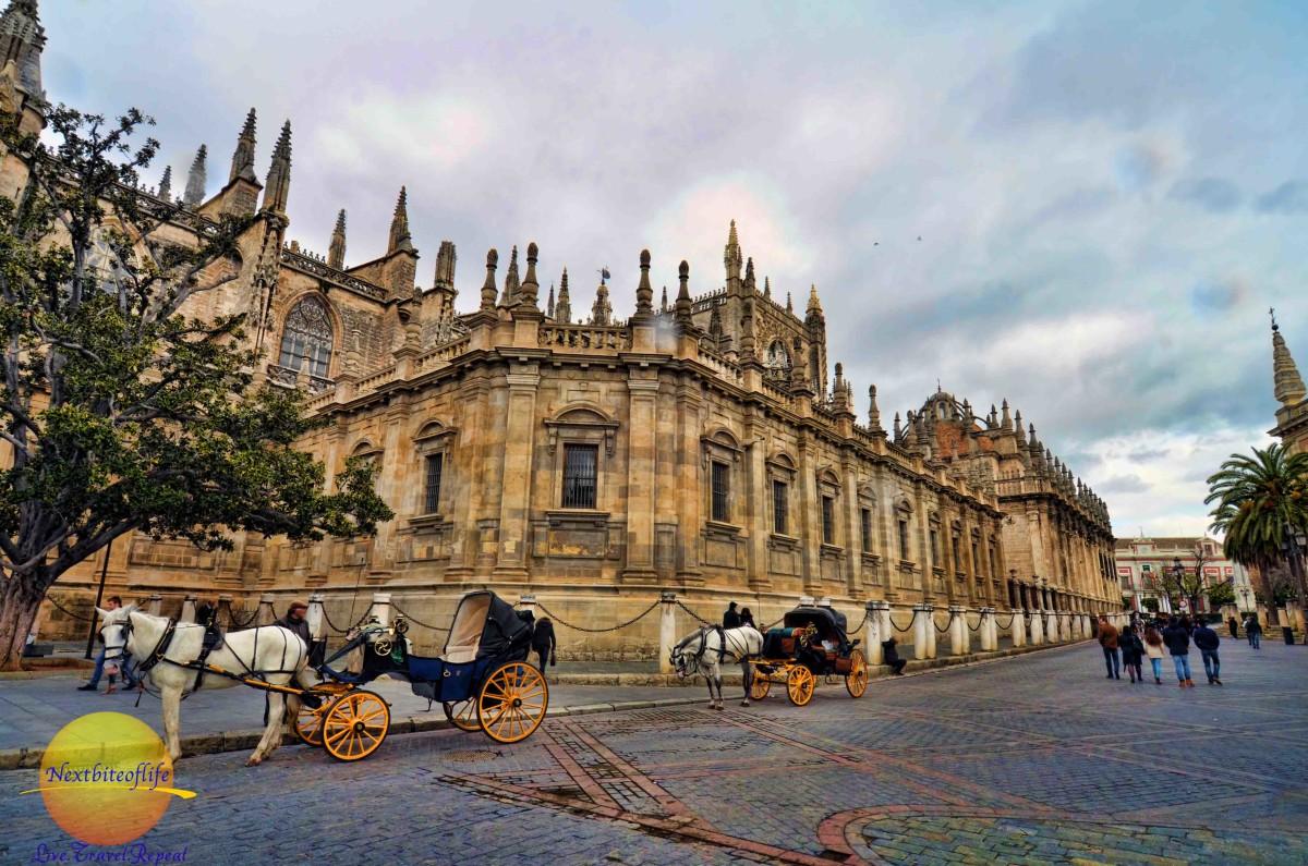 seville cathedral la giralda