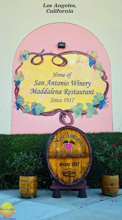 San Antonio Winery pinterest #winery #sanantonio #sanantoniowinery #losangeleswinery #wine #cardinalewine