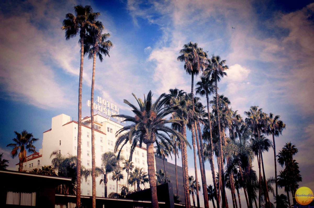 hotel hollywood roosevelt in los angeles with palm trees