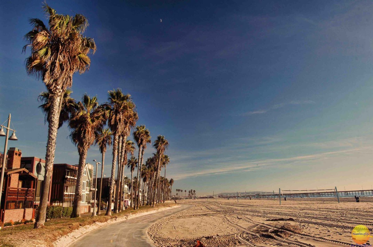 image of venice board walk, palm trees and volleyball beach