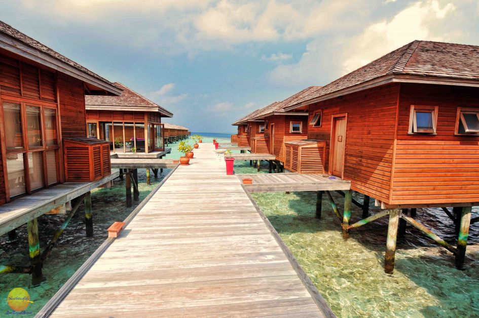 Duniye Spa at vilamendhoo resort..cabins lined up on the right,view of sea