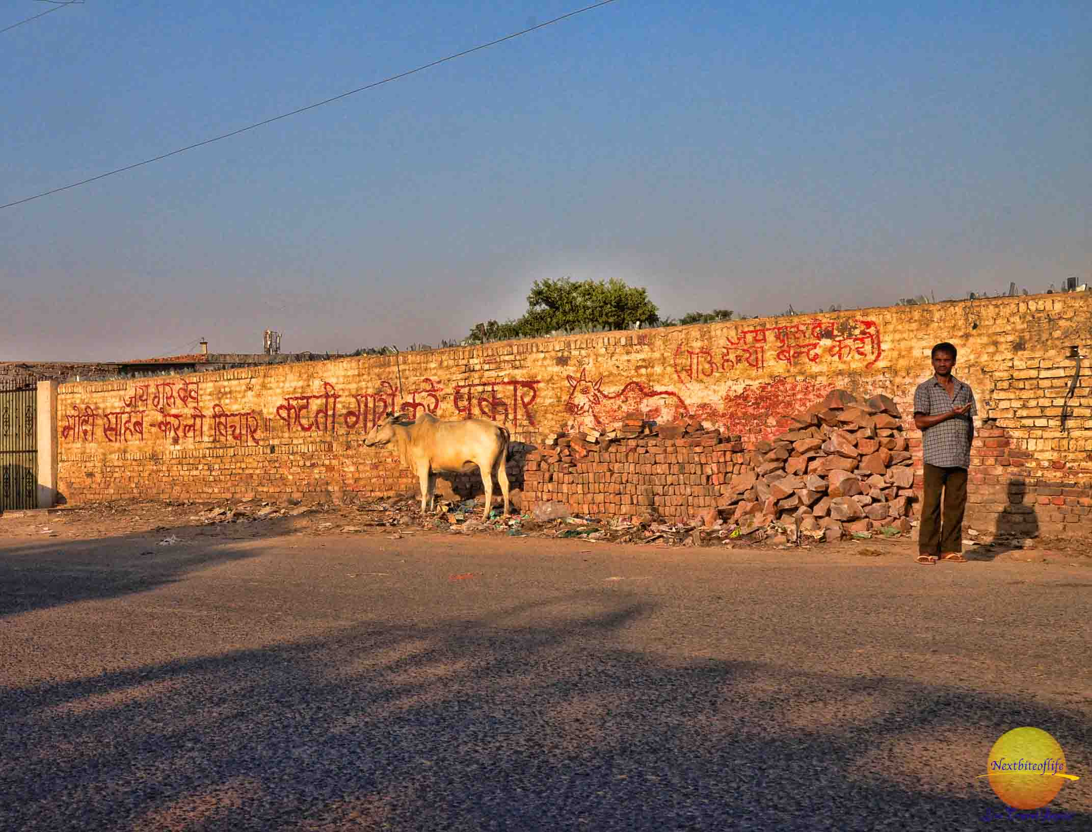 Opinions of New Delhi, India –  Our Trip Roundup.