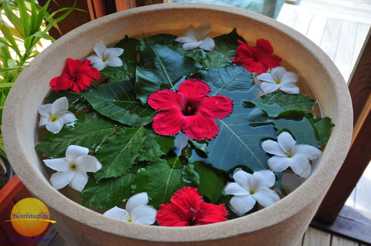 flowers in vase at Duniye spa vilamendhoo resort maldives