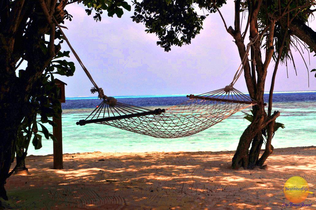 hammock at vilamendhoo resort maldives image