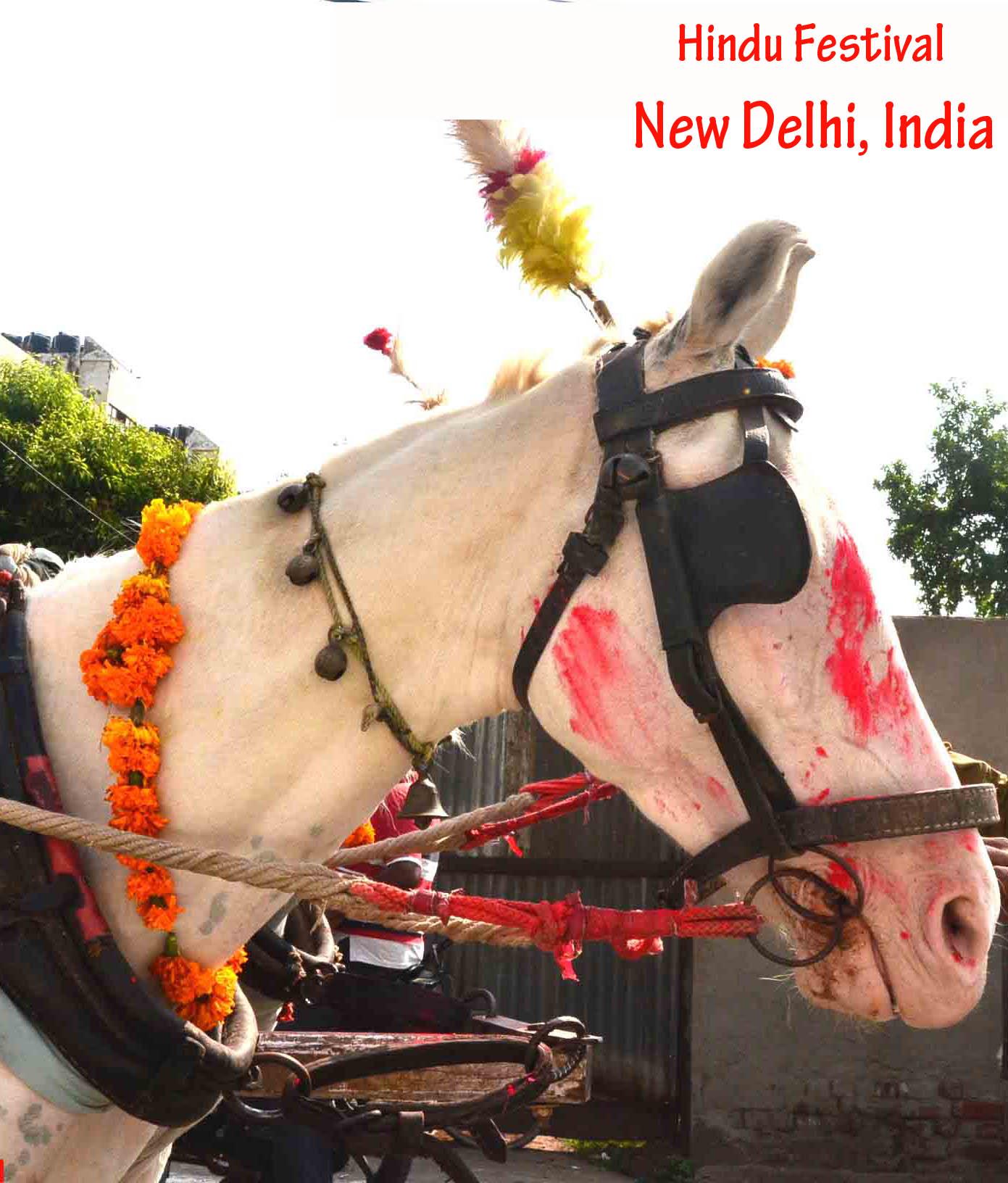Hindu Festival in New Delhi, India
