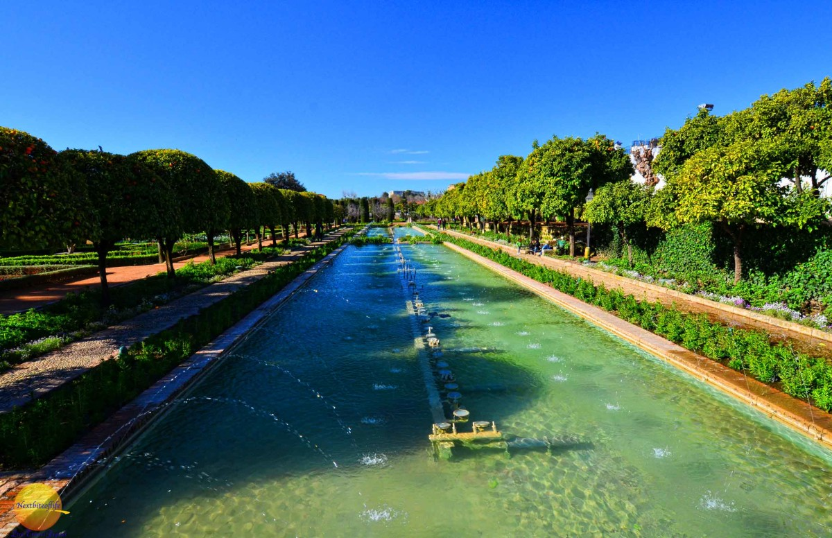 55000 square meters of gardens and ponds at alcazar cordoba.