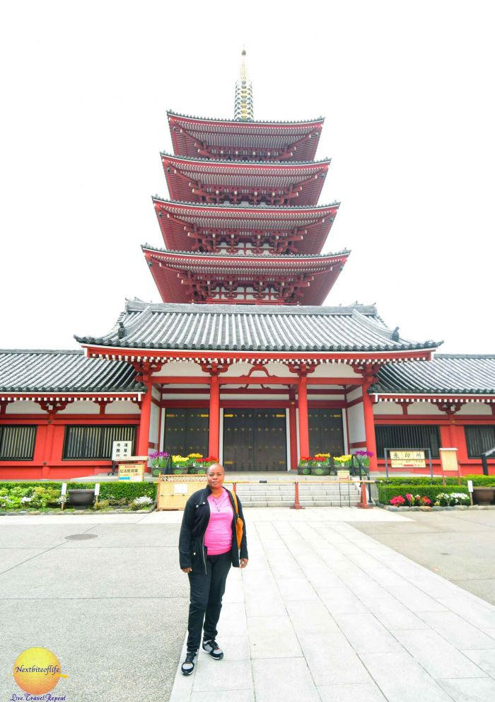 The pagoda behind me at Sensoji