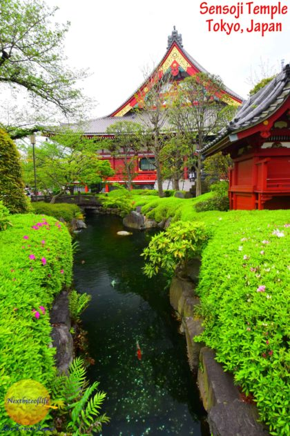 Sensoji Temple Asakusa, Tokyo #sensoji #temple #asakusa #japanesesetemple #visittokyo