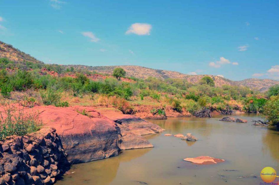 pilaneberg park watering hole in our big 5 african safari