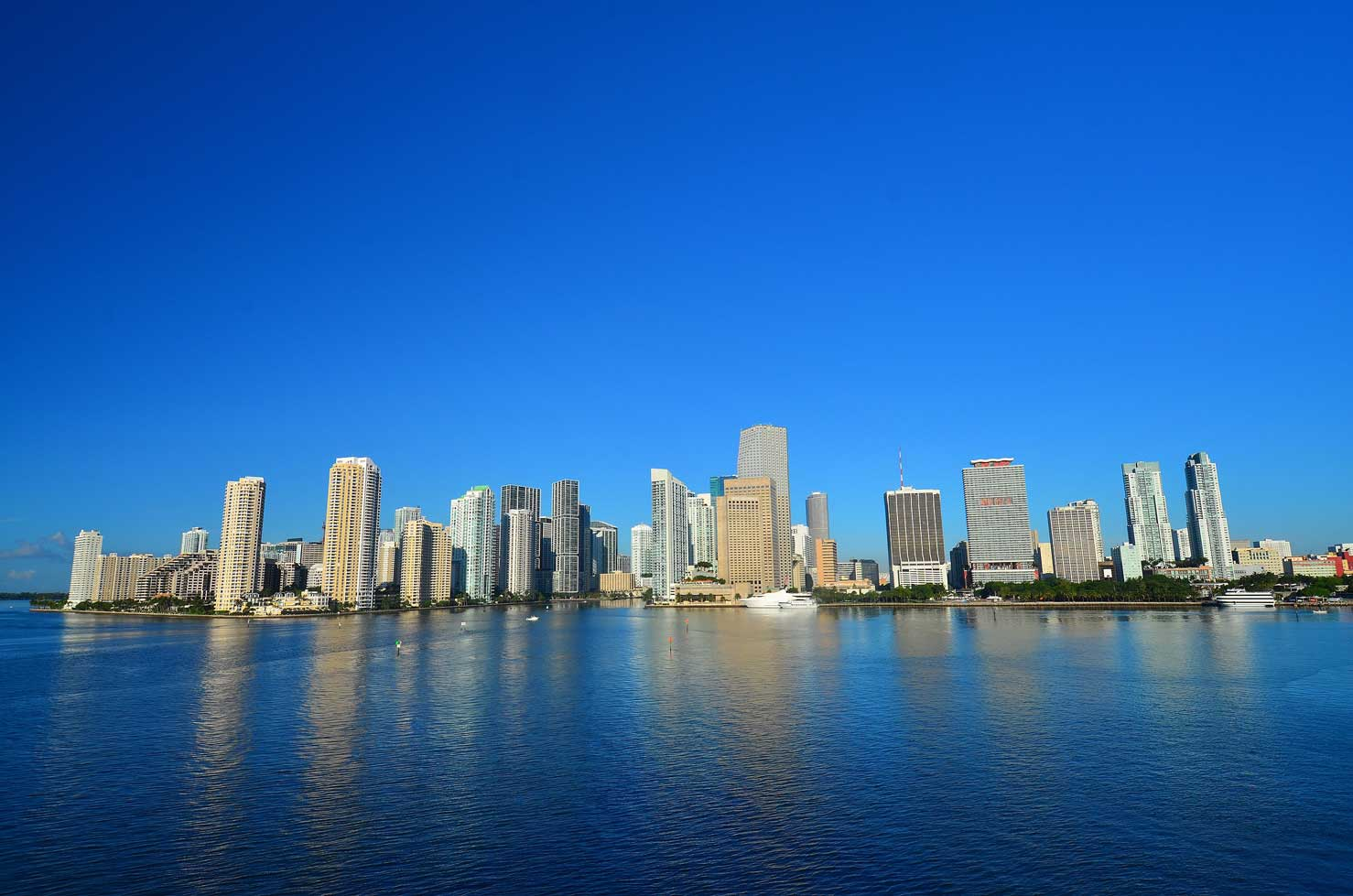 miami skyline nextbiteoflife