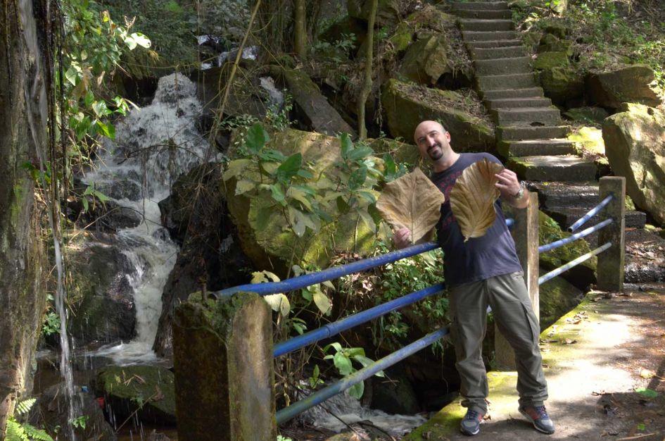 man holding huge leaf at Erin Ijesha falls