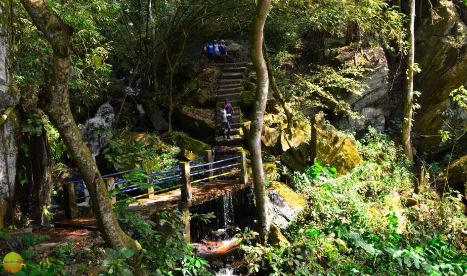 The slippery stairs leading you up or down from the Nigeria waterfalls