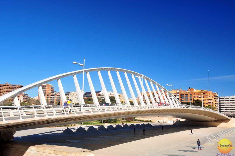 bridge at city of arts and sciences valencia spain