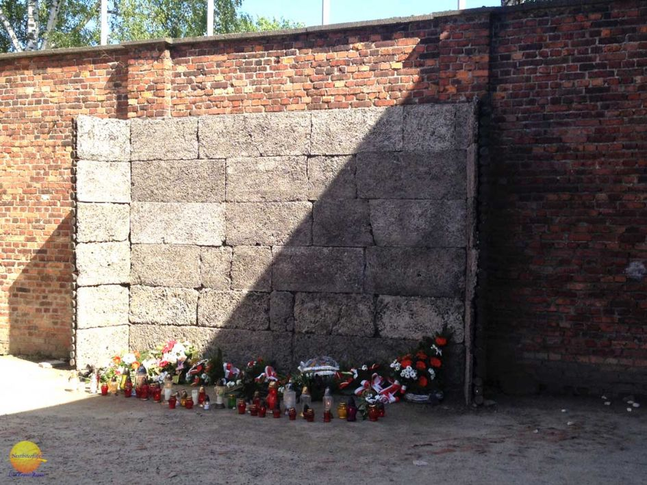 death wall Auschwitz with flower pots on the ground