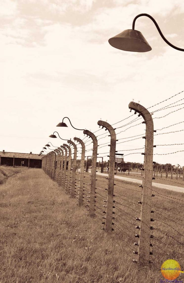 picture of Auschwitz barbed wire fence and lamps