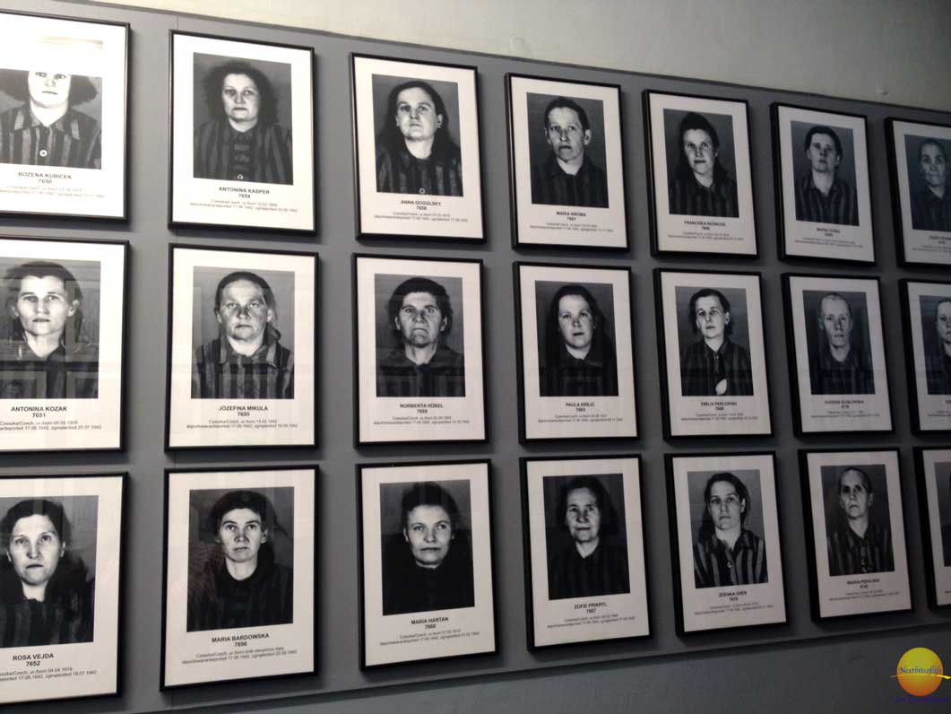 monumnetal auschwitz photos of victims