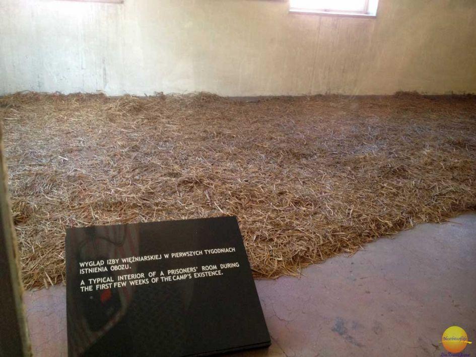 Straw bedding on floor in Auschwitz camp Krakow where the prisoners slept.