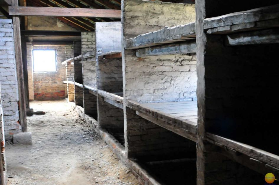 Beds at the women's camp in Birkenau, basically wooden cubicles