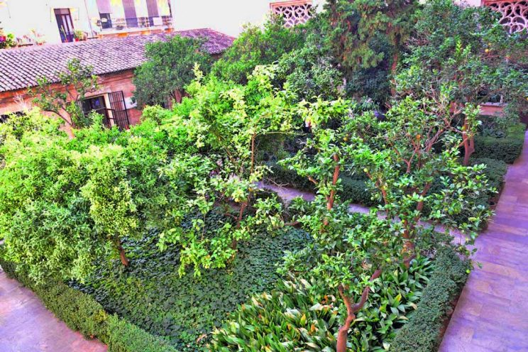courtyard of oranges la lonja valencia