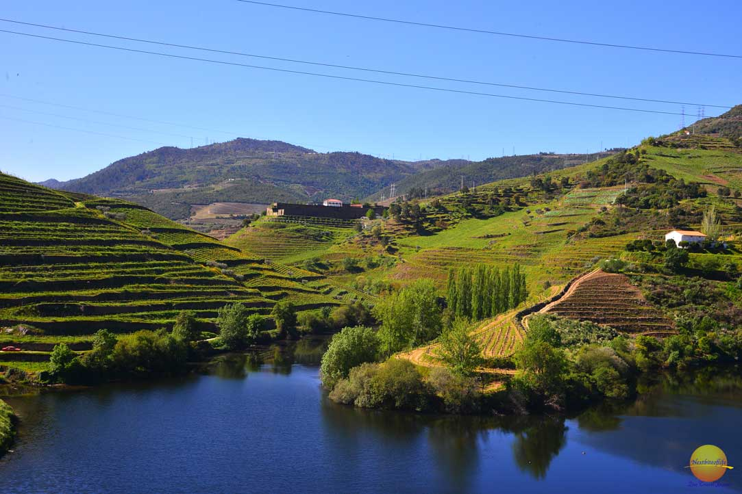 douro valley landscape, porto portugal, an experience on our Porto visit