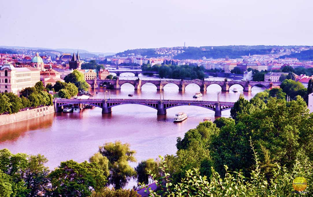 View of brigdes from the top of a hil in Prague showing river and trees