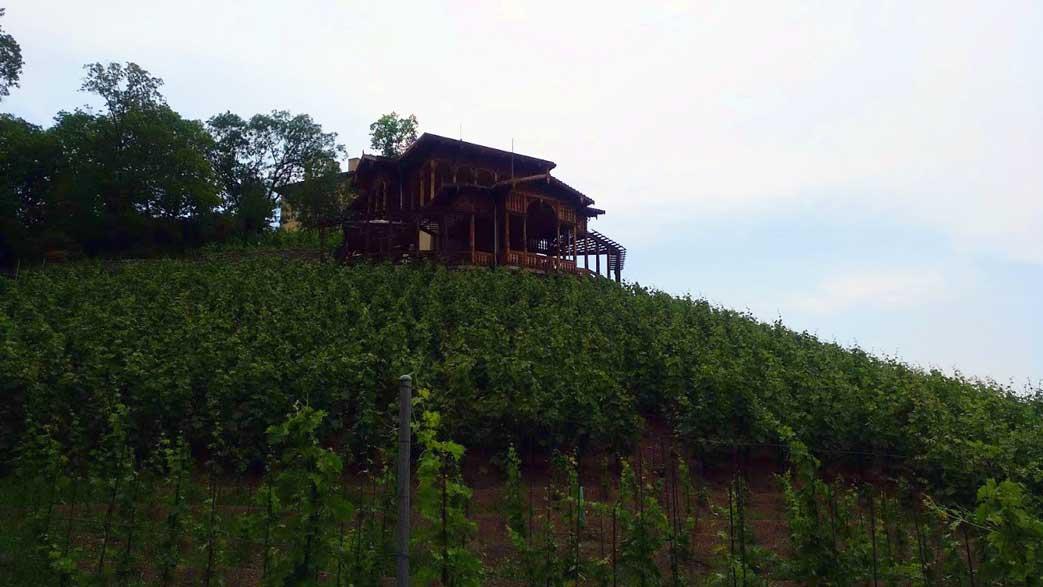vineyard in prague with bar
