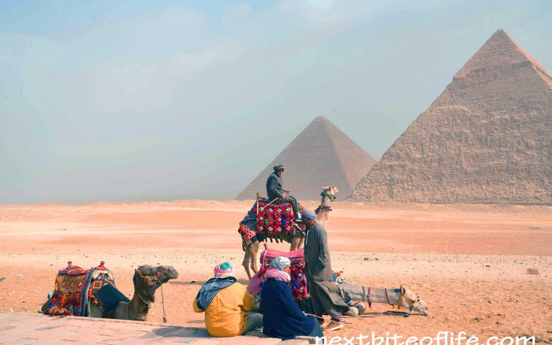 Postcard From Stupendous Cairo Egypt