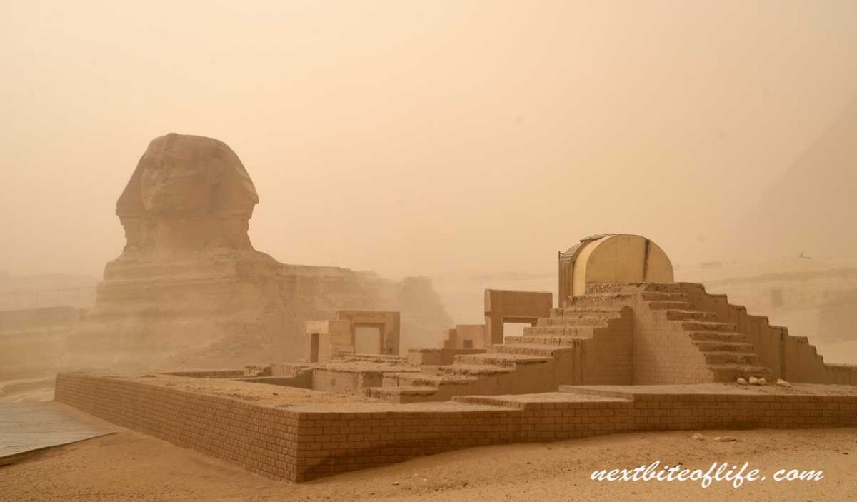 24 hours in Cairo from Hurghada view of sphinx