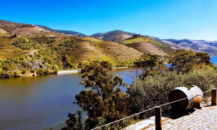 Douro River Cruise And Wine Tasting Tour In Portugal