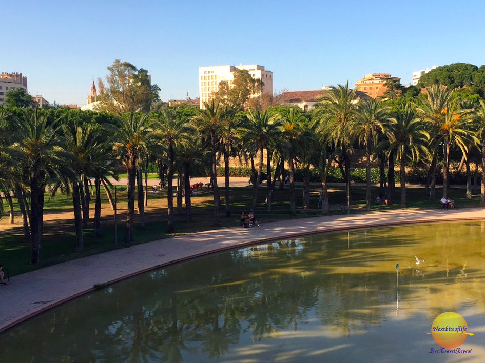 Turia park with water and trees Valencia Spain