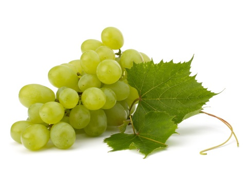 grapes in a bunch
