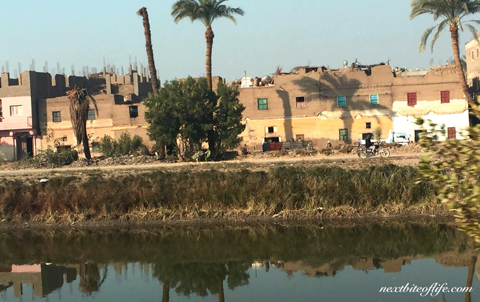 street scene in Luxor, with river and cement houses on the other side
