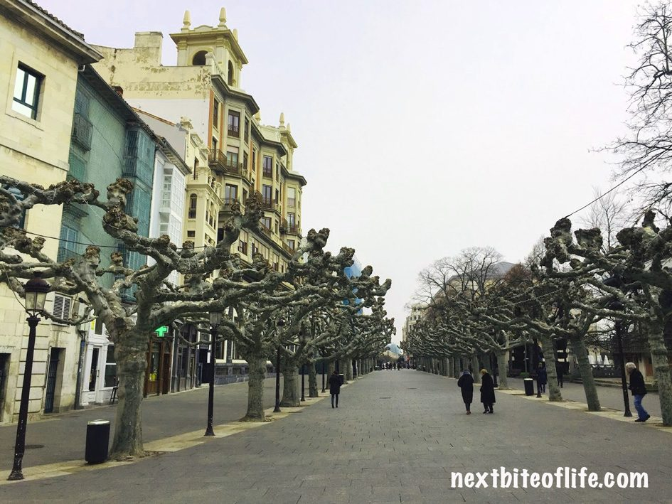 paseo de epsolon Burgos