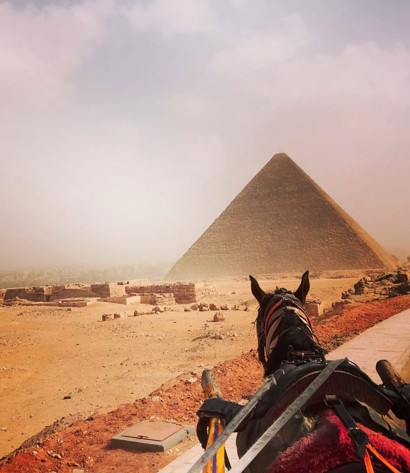 pyramid in Cairo with horse going towards it